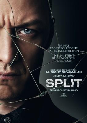Poster do Filme Fragmentado